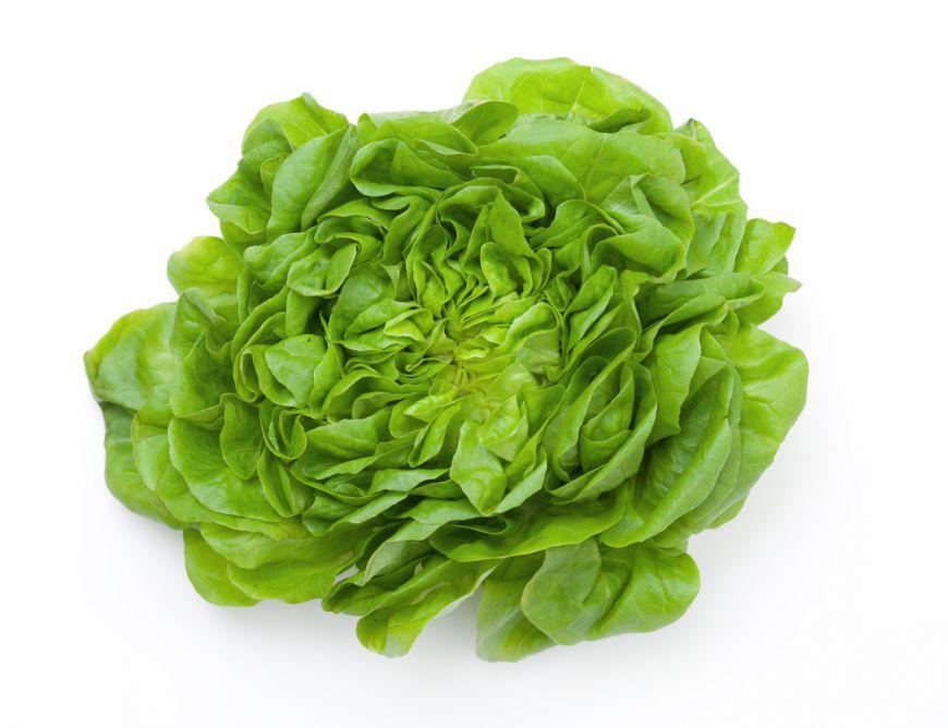 salată verde