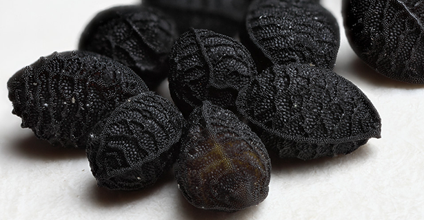 semințe de chimin negru