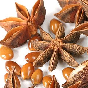 anason stelat semințe