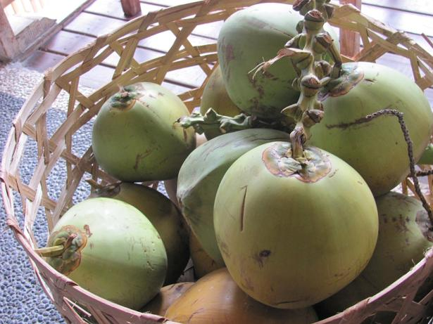 nucă de cocos tinere