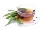 ceai de patalgina