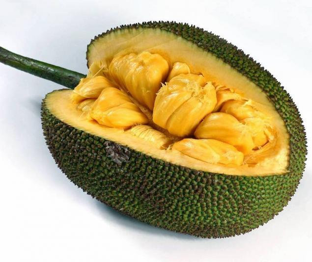 fruct de jaca