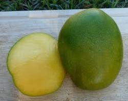 fruct mango necopt