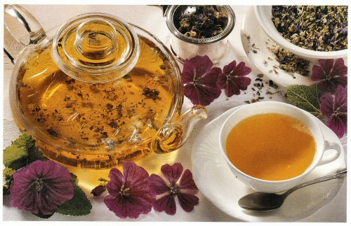 ceai de nalba