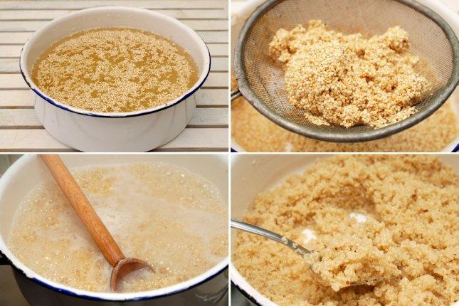quinoa gatita