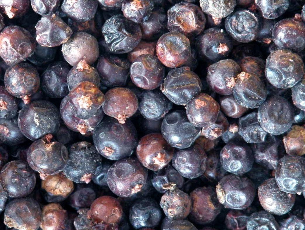 ienupăr fructe