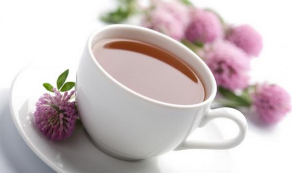 ceai de trifoi rosu