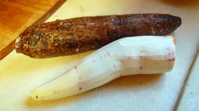 maniocul