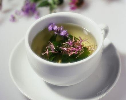 ceai de maghiran