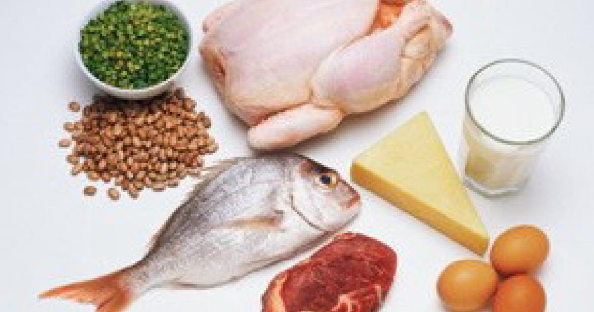 Польза от белковой диеты