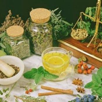 Plante din flora spontana, cu efecte afrodisiace - Biaplant